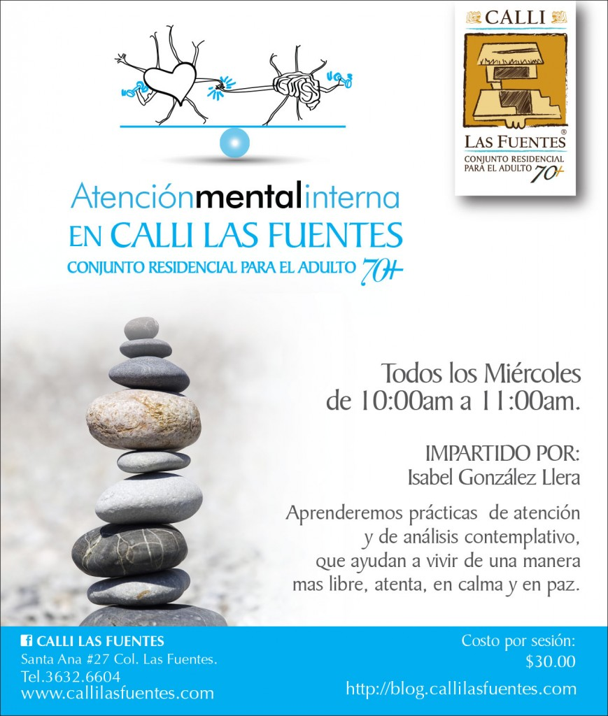 ami-atencion-mental-interna-2015