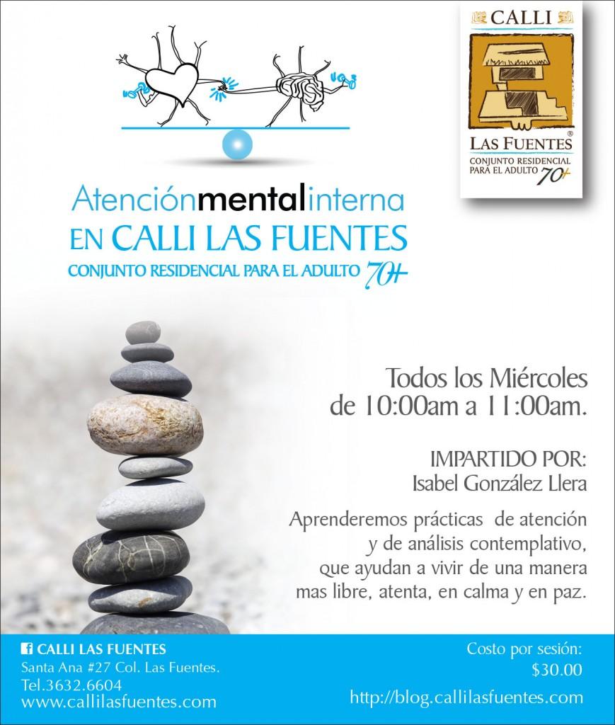 ami-atencion-mental-interna-2015