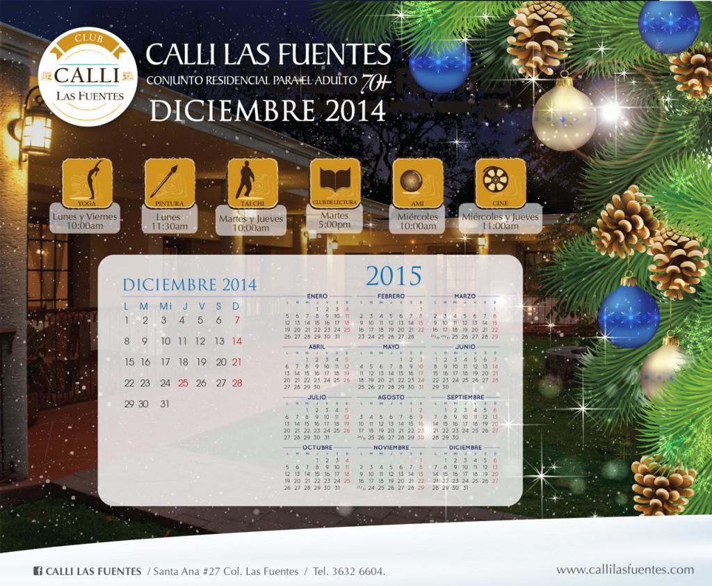 calendario-externo-dic14
