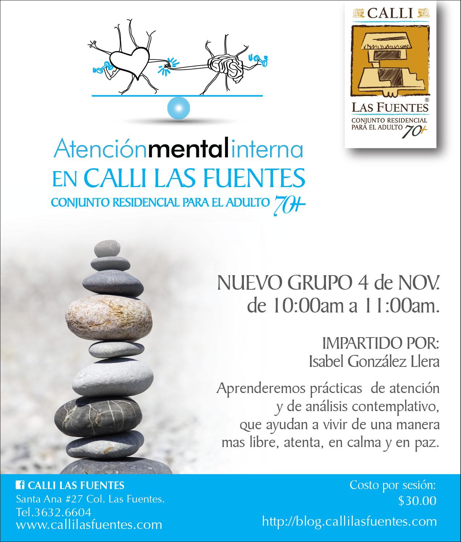 ami-atencion-mental-interna-nuevo-grupo-2015